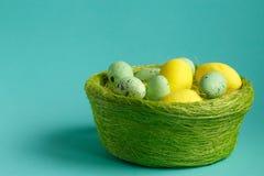 kolorowe Wielkanoc jaj gniazdo Zdjęcia Royalty Free