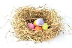 kolorowe Wielkanoc jaj gniazdo Zdjęcia Stock