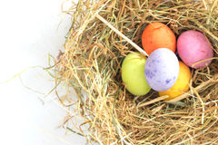kolorowe Wielkanoc jaj gniazdo Obraz Stock