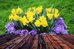 Kolorowego drewnianego ogrodzenie stołu niebieskiego nieba błękitna zieleń barwił stołowego kierowego kwiat plamy tła valentine Obraz Stock