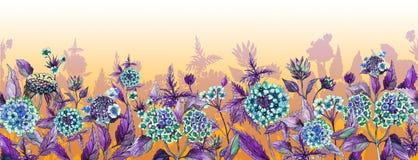 Kolorowego lata szeroki sztandar Piękny błękitny lantana kwitnie z purpurowymi liśćmi na pomarańczowym tle ilustracja wektor