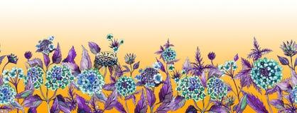 Kolorowego lata szeroki sztandar Piękny lantana kwitnie z purpurowymi liśćmi na pomarańczowym tle royalty ilustracja