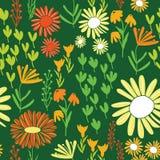 Kolorowego stokrotka światu ogródu wielostrzałowy bezszwowy wzór ilustracja wektor