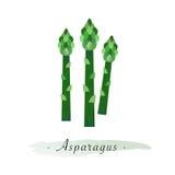 Kolorowej akwareli tekstury wektorowy zdrowy jarzynowy asparagus Obrazy Royalty Free