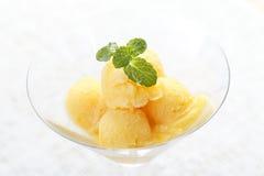 Kolorowej mieszanki owocowy sorbet w koktajlu szkle Zdjęcie Royalty Free