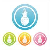 kolorowi ananasowi znaki royalty ilustracja