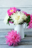 Kolorowi astery w białej wazie obraz stock