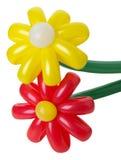 Kolorowi balonowi kwiaty na białym tle Zdjęcia Royalty Free