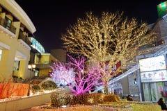 kolorowi Bożych Narodzeń światła Zdjęcia Stock