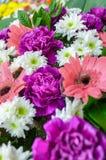 kolorowi bukietów kwiaty Fotografia Royalty Free