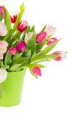 kolorowi bukietów tulipany zdjęcie stock