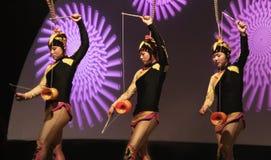 Kolorowi Chińscy ansambli/lów wykonawcy przy Floryda stanu jarmarkiem w Tampa obraz royalty free