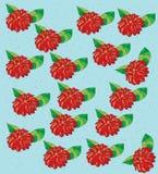 Kolorowi czerwoni kwiaty Zdjęcia Royalty Free