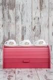 Kolorowi Drewniani chlebów pudełka dla Chlebowy Utrzymywać Zdjęcia Royalty Free