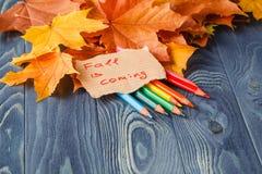 Kolorowi drewniani ołówki z jesienią leafs na drewnianym stole Fotografia Royalty Free