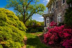 Kolorowi drzewa i krzaki za dworem przy Cylburn Arboretu Fotografia Stock