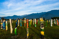 Kolorowi drzewni bagażniki Zdjęcie Royalty Free