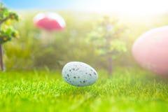 Kolorowi Easter jajka i jeden błękitny Easter jajko na wiosny zielonej trawie Fotografia Stock