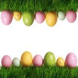 Kolorowi Easter jajka na zielonej trawie odizolowywającej Zdjęcie Royalty Free
