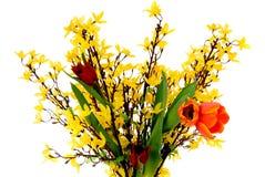 kolorowi Easter tulipany zdjęcia stock