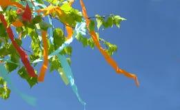 Kolorowi faborki latają w wiatrze obrazy stock