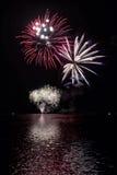 Kolorowi fajerwerki na Czarnym niebie fotografia stock