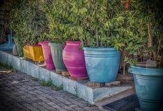 Kolorowi Flowerpots z rzędu Fotografia Stock