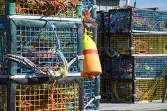 Kolorowi homarów oklepowie na drewnianym molu Obraz Stock