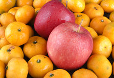Kolorowi jabłka i pomarańcze Obraz Stock