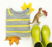 Kolorowi jesień liście, dzieciaków podeszczowi buty, lampasa pulower, zabawkarscy dinosaury jesienią zbliżenie kolor tła ivy poma zdjęcie royalty free