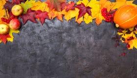Kolorowi jesień liście z jabłkiem, rowan i banią na czerni, obraz stock