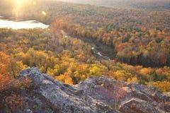 Kolorowi jesieni drzewa w wczesnego poranku świetle obrazy royalty free