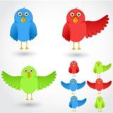 Kolorowi kreskówka ptaki inkasowi ilustracja wektor