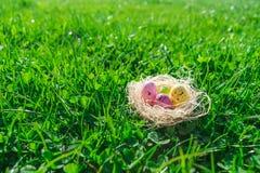 Kolorowi kropkowani Wielkanocni jajka w s?omie gniazduj? na ?wie?ej zielonej trawie i koniczynach fotografia stock