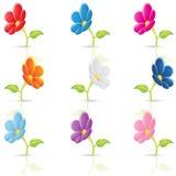 kolorowi kwiaty Zdjęcia Stock