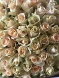 kolorowi kwiaty obramiaj? wiele r??e fotografia royalty free