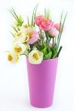 Kolorowi kwiaty w garnkach Zdjęcia Royalty Free