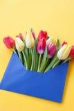 Kolorowi kwiaty w kopercie Obraz Stock