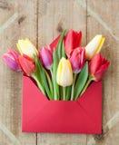 Kolorowi kwiaty w kopercie Obrazy Royalty Free