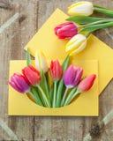 Kolorowi kwiaty w kopercie Zdjęcie Royalty Free