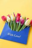 Kolorowi kwiaty w kopercie Fotografia Royalty Free