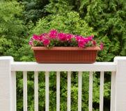 Kolorowi kwiaty w kwiacie na białym patio poręczu Zdjęcia Stock
