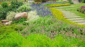 Kolorowi kwiaty w pięknym natura parku, Tajlandia Obrazy Stock