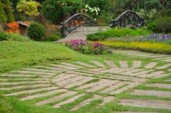 Kolorowi kwiaty w pięknym natura parku, Tajlandia Fotografia Stock