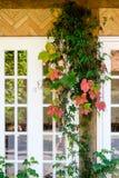 Kolorowi liście w spadku blisko windowsill Fotografia Royalty Free