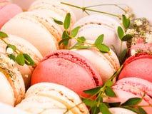 Kolorowi macaroons, Kolorowy francuski deser, tradycyjni francuscy kolorowi macarons w rzędy w pudełku Obrazy Stock