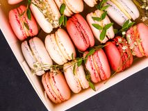 Kolorowi macaroons, Kolorowy francuski deser, tradycyjni francuscy kolorowi macarons w rzędy w pudełku Fotografia Royalty Free