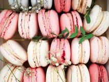 Kolorowi macaroons, Kolorowy francuski deser, tradycyjni francuscy kolorowi macarons w rzędy w pudełku Zdjęcie Stock