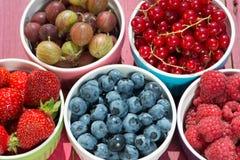 Kolorowi owocowi puchary Fotografia Stock