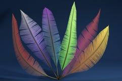 Kolorowi piórka na błękitnym tle Obrazy Stock